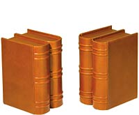 Click here for Book Fortress Bookends from Levenger