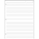 Special Request™ Full-Page Ruled (100 sheets), 3-Ring, Letter