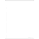 Special Request™ Blank (100 sheets), Unpunched, Letter