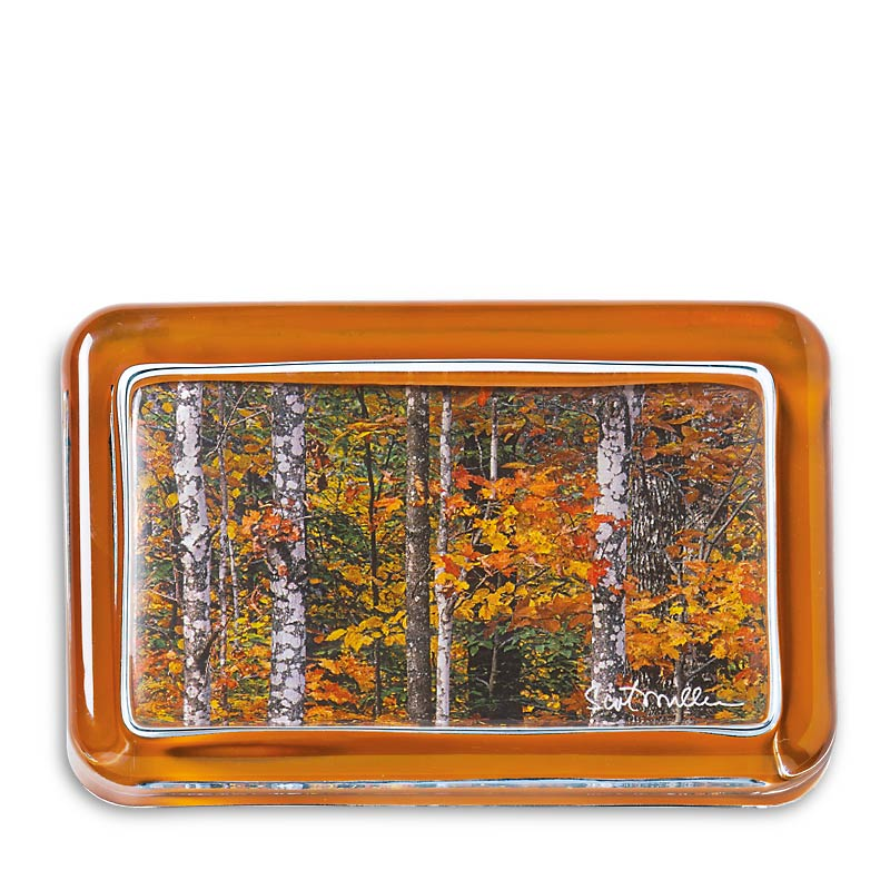 Thoreau Maine Woods Paperweight (Trees or Water)