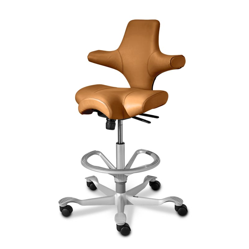 Capisco Chair in Leather M Levenger
