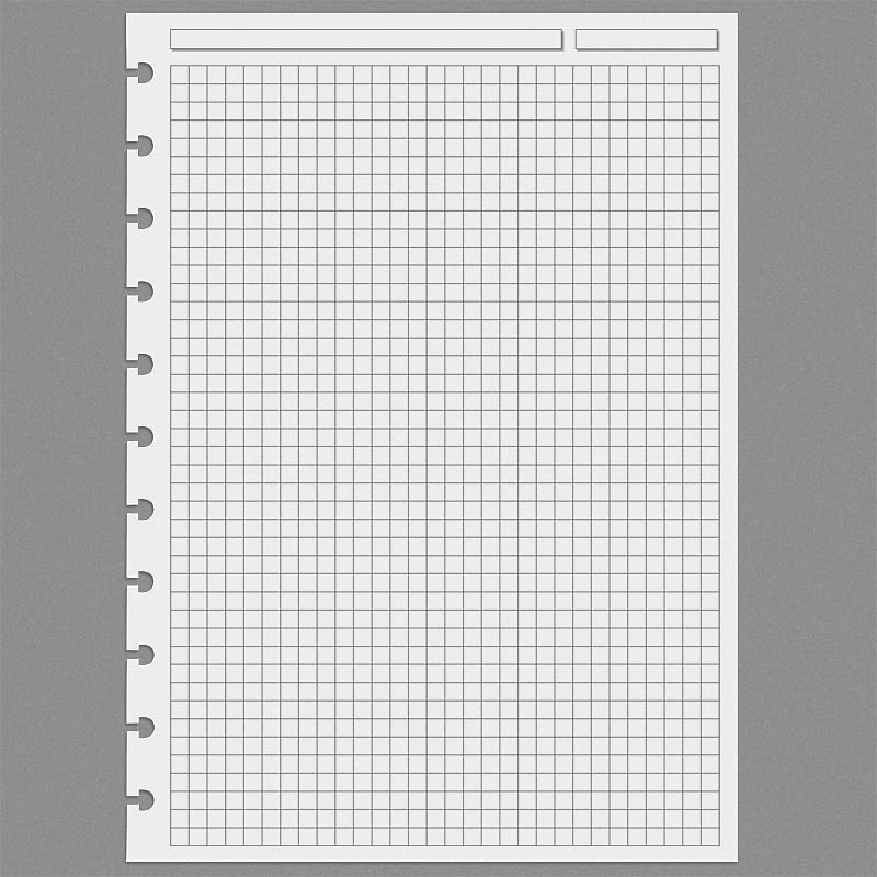 Special Request™ Full-Page Grid (100 sheets), Circa A4 - Levenger
