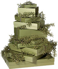 Our signature sage green gift boxes