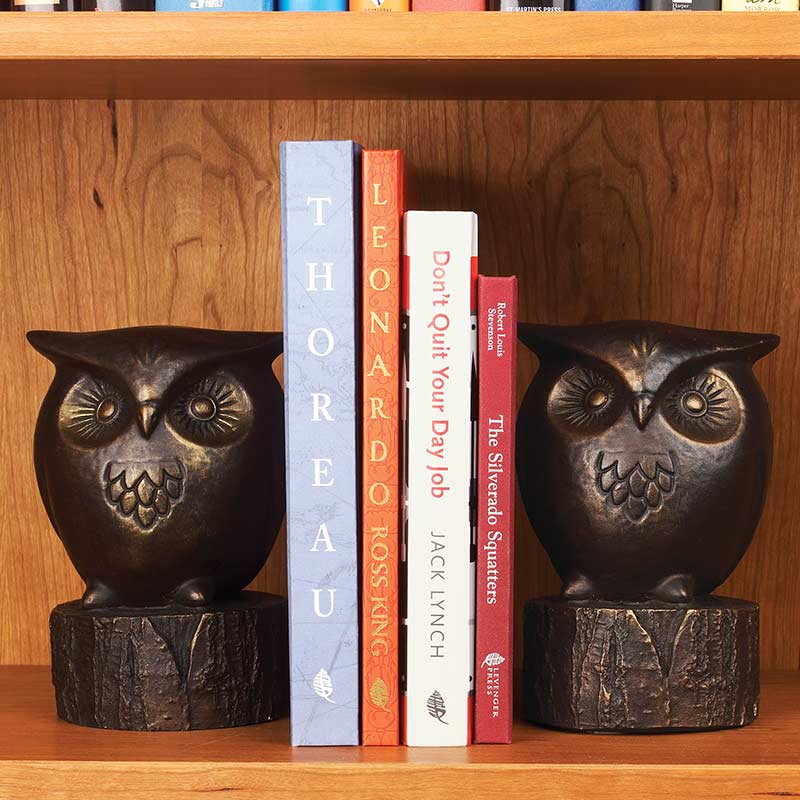 Wide-Eyed Owl Bookends (set of 2)