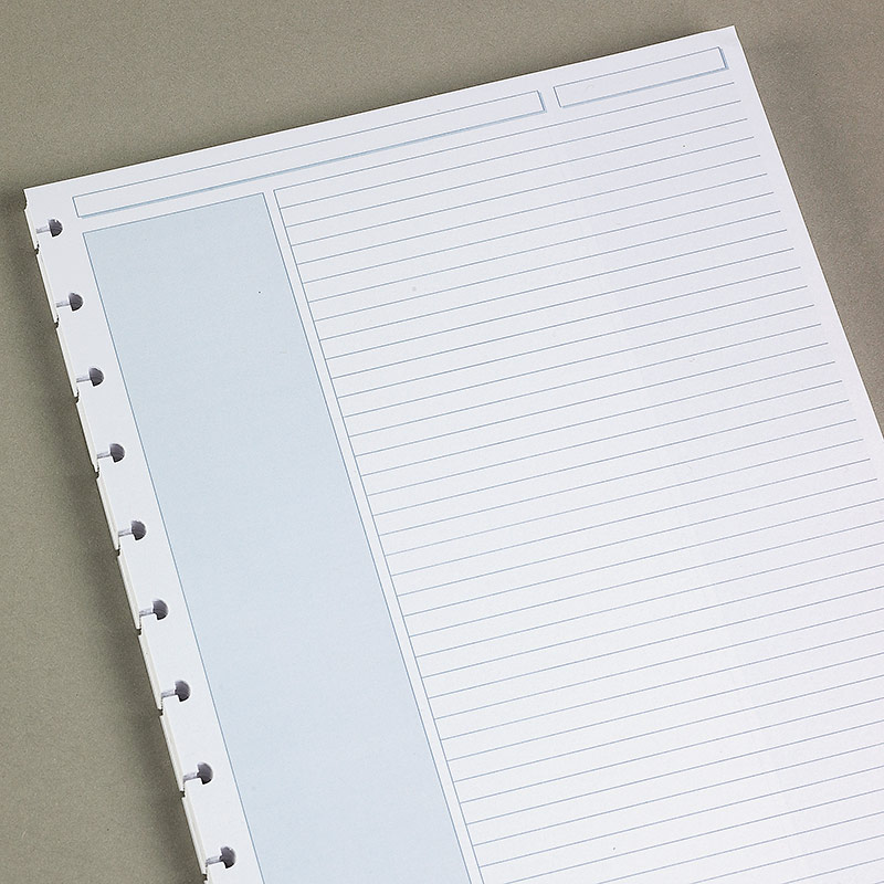 Circa Shaded Annotation Ruled Sheets (set of 100)