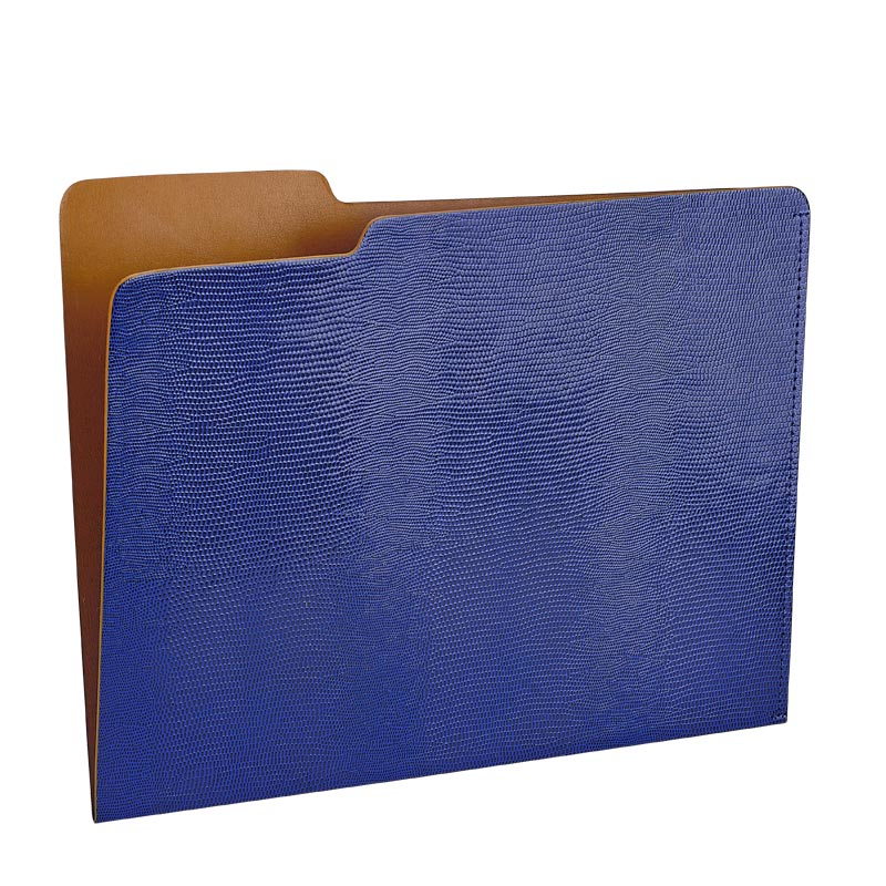 Blue Embossed File Folder