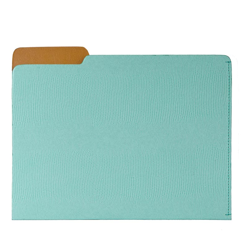 Mint Embossed File Folder