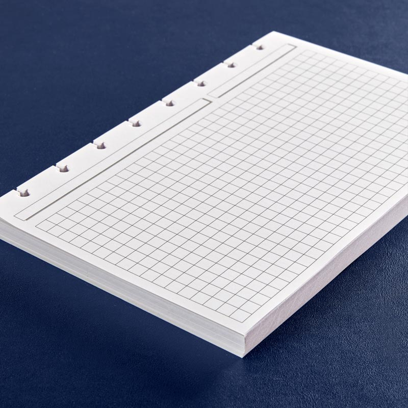 Circa® Landscape Full-Page Grid Refill (100 Sheets)