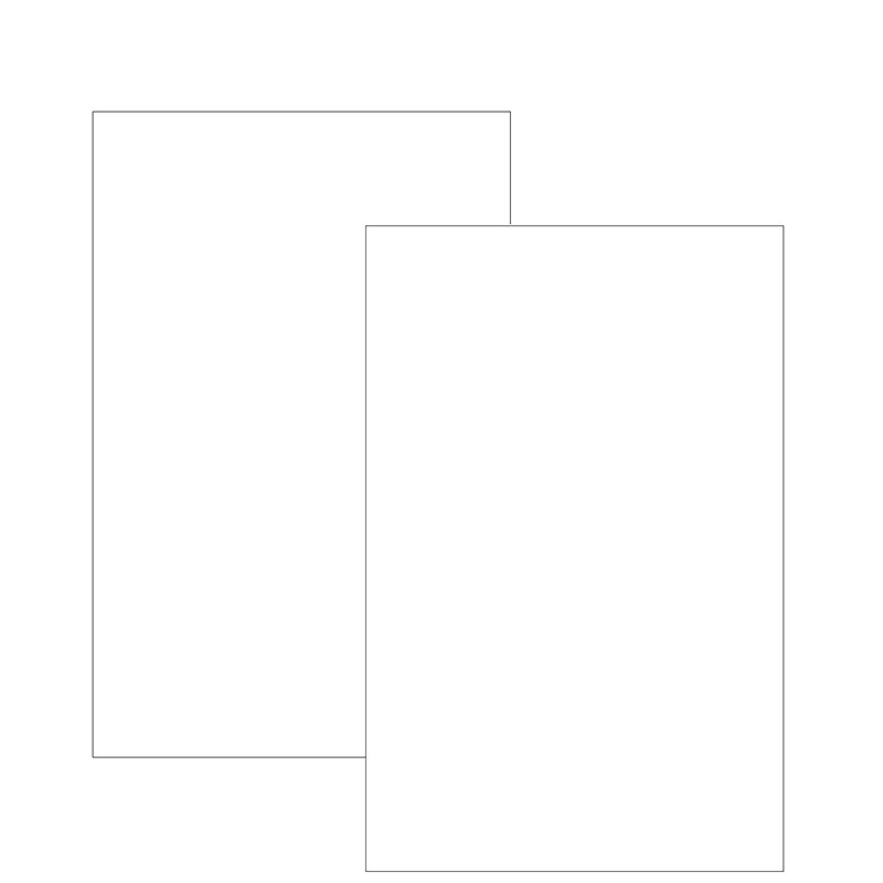 Special Request™ Blank (100 sheets), Unpunched, Junior