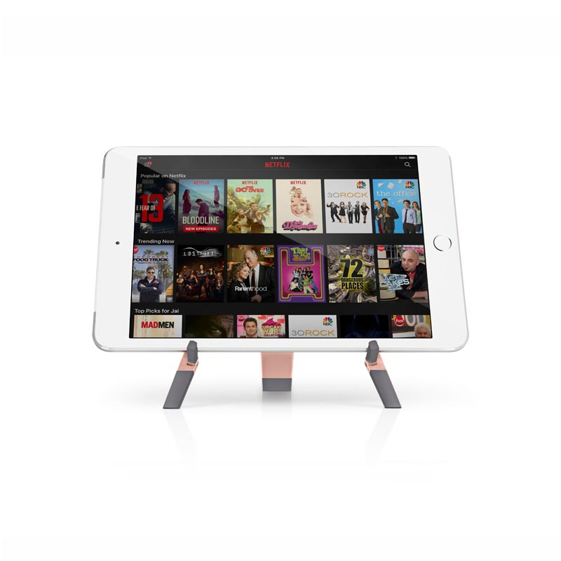 Compass 2 Portable Display - Rose Gold