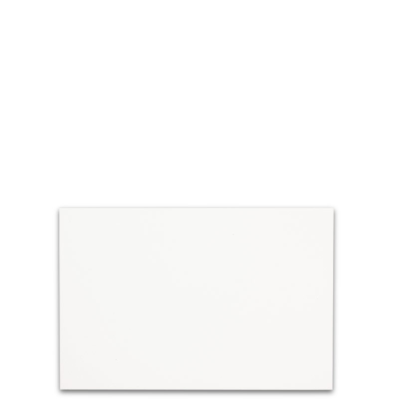Special Request™ Horizontal Blank 4 x 6 Cards (set of 100)