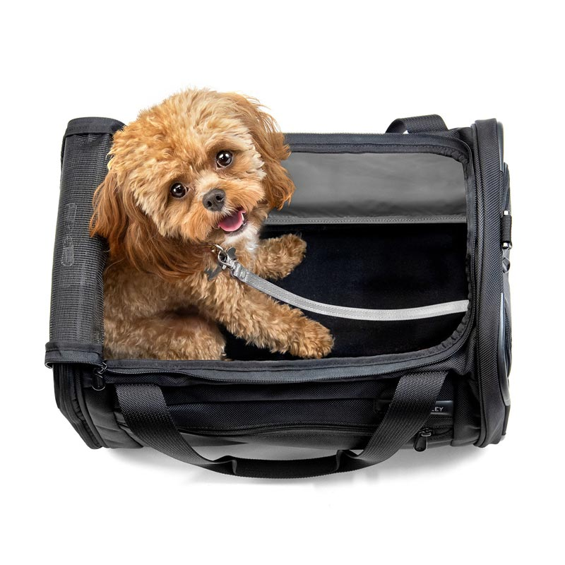 Baseline Deluxe Pet Carrier