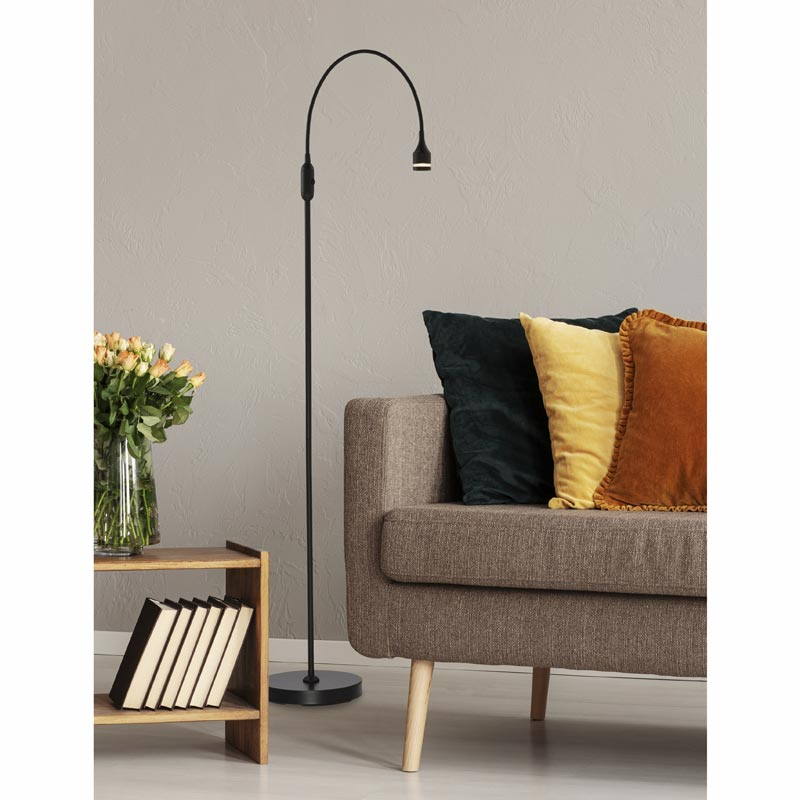 Overarching LED Floor Lamp